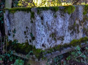 old trough