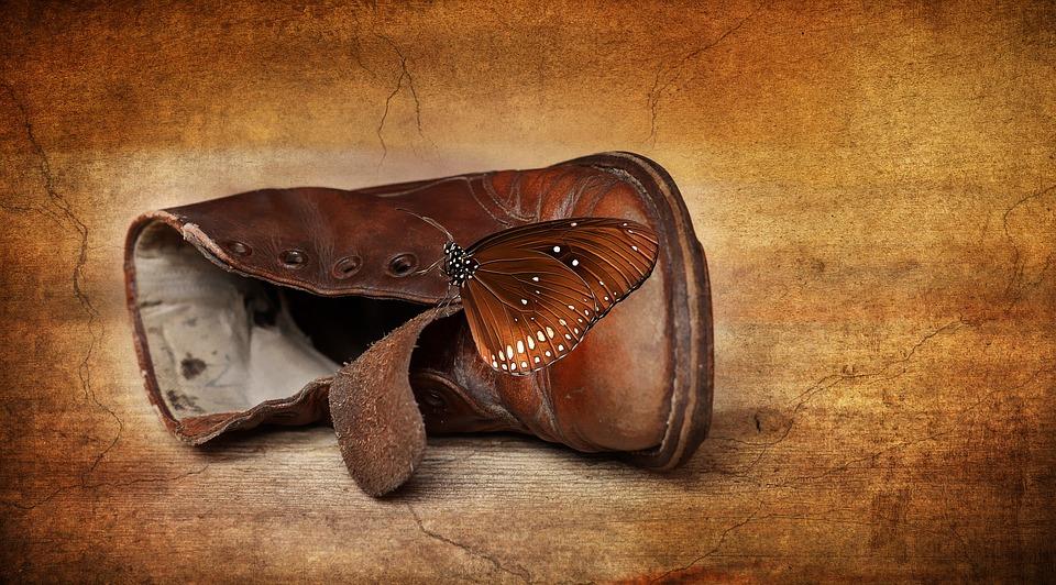 shoe-682702_960_720